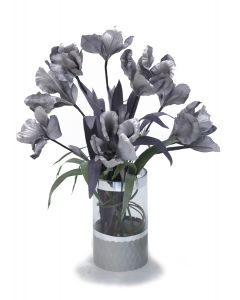Gray Iris in Gray Banned Cylinder