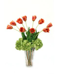 Dark Orange Red Tulips and Green Hydrangeas in Fluted Gold Rim Trimmed Glass Vase