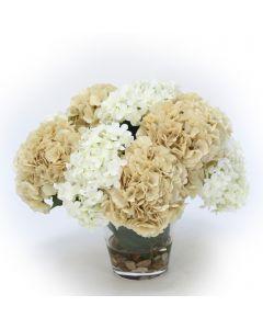 Beige and Cream Hydrangea Mix in Glass Vase