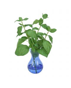 Basil in Blue Bulb Glass Vase (Set of 3)