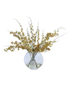 Gold Yellow Oncidium Dancing Orchids in Glass