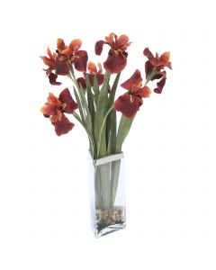 Rust Iris in Silver Rimmed Triangle Glass
