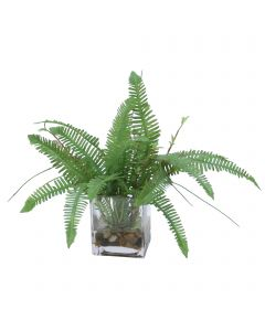 Fern with Mixed Grass in Rectangular Glass