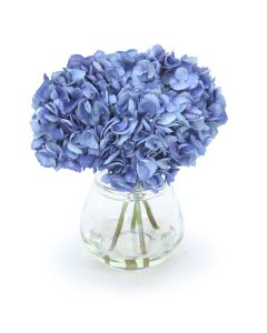 Baby Blue Hydrangea in Rimmed Vase
