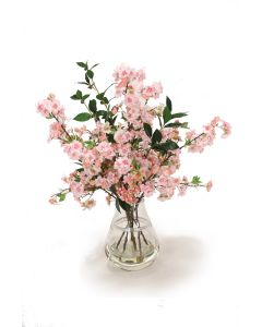 Pink Pear Blossoms in Rimmed Vase