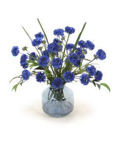 Blue Cornflower in Blue Vase