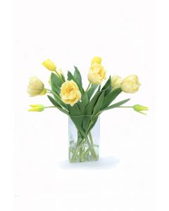 Yellow Parrot Tulips in Triangle Vase