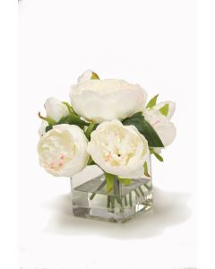 White Peonies in Square Glass