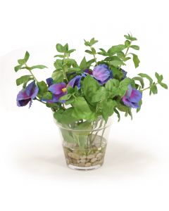 Pansies in Glass Flower Pot