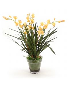 Yellow Orchids in Glass with Moss