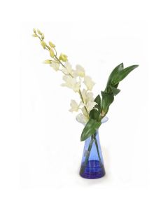White Orchids in Blue Vase