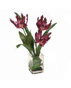 Parrot Tulips in Glass Vase