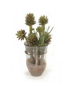 Succulents in Art Glass Vase
