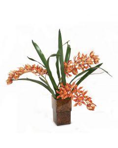 Cymbidium Orchid in Amber Glass