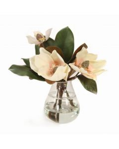 Magnolias in Teardrop Glass Vase