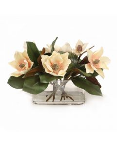 Magnolia Blooms with Magnolia Foliage in Oval Glass Vase