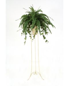 Boston Fern in Beige Vase with Plant Stand