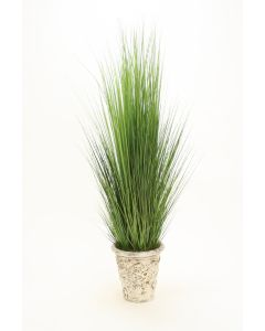 Grass in Aged Stone Pot