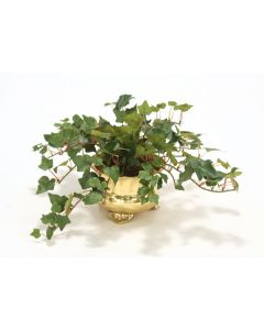 Mountain Ivy in Footed Brass Pot (Min Pack of 3)