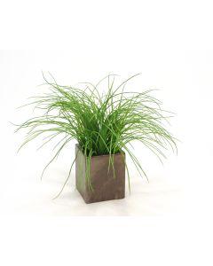 Mixed Silk Grass in Bronze Planter