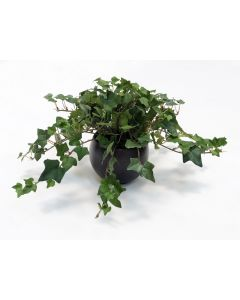 Mountain Ivy in Small Round Crystal Bronze Planter (Min pk 3)