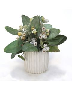 Frosted Eucalyptus in White Haven Vase