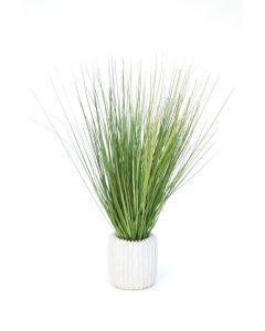 Grass in White Ribbed Vase