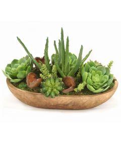 Succulent Garden in Wood Bowl