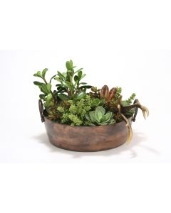 Succulent Mix in Round Copper Planter