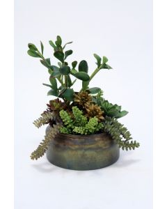 Cactus With Jade and Hen and Chicks in Metal Round Container