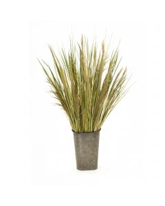 Natural Grass with Reeds in Metal Wall Pocket