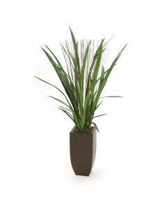 Cymbidium Foliage in Metal Vase