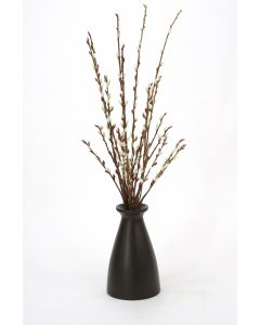 Pussy Willow Branches in Tall Wood Vase