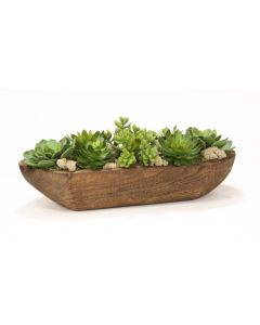 Hen and Chicks Mixed Succulents in Natural Wooden Tray