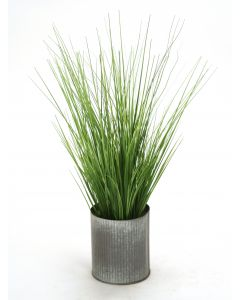 Two Tone Grass in Grooved Tin Cylinder