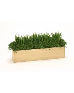 Grass and Succulents in Wooden Box