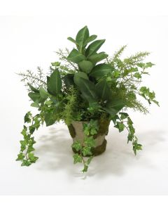 Mini Ivy with Fern and Orange Foliage in Mossed Pot