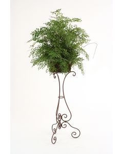 """Smilax in Rust Finish Metal Planter Atop 40"""" Rust-Black Victorian Plant Stand (total 74""""H)"""
