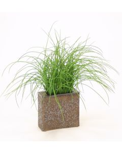 Grass in Small Bronze Rectangle Vase