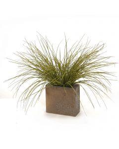 Olive Grass in Bronze Pillow Vase