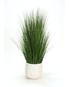 Multi and Two Tone Green Grass in White Gabbi Planter
