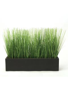 Green Grass in Rectangle Wood Box