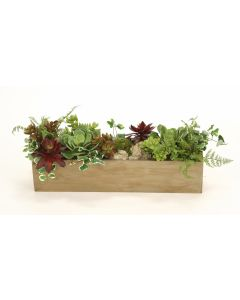 Mix of Succulents with Ferns and Grasses in Wooden Wall Box