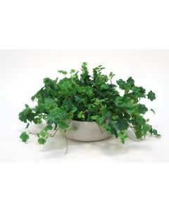 Geranium Bush in Grey Wash Bowl