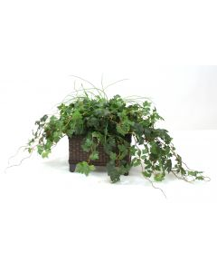 Grass and Grape Ivy in Dark Stained Rectangle Floor Planter