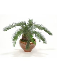 Cycas Palm Floor Plant in Autumn Red Earthenware Planter