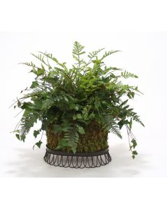 Fern & Ivy in Wire Basket