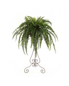 Boston Fern in Victorian Plant Stand