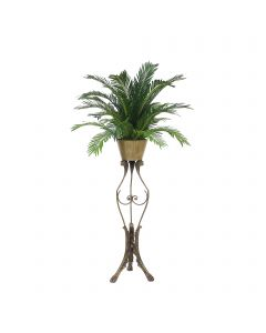 Cycas Palm in Planter with Ram Head Plant Stand