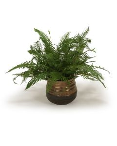 Fern in Blue and Bronze Pot (Set of 2)